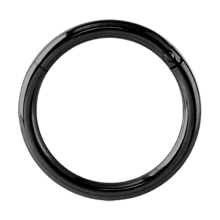 Black Steel Hinged Segment Ring