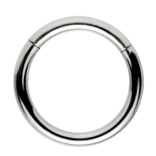 Steel Hinged Segment Ring