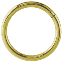 Gold Steel Hinged Segment Ring