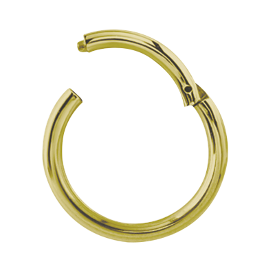 Gold Steel Hinged Segment Ring Ear