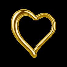 Gold Steel Hinged Segment Ring Heart Shape