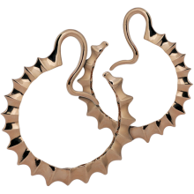 Rose Brass Hoop Spikes Earrings (Price for Pair)