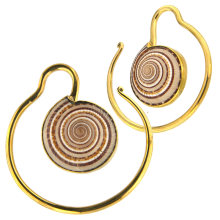 Brass Spiral Earrings with Architectonica Trochlearis Shell (price for pair)