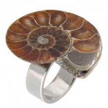 Steel Ring with Fossil Ammonite