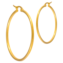 Steel Gold PVD Round Hoop Earrings