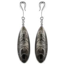 Fossil Orthoceras Silver Pendant Earrings (price for pair)