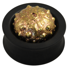 Ebony Plug with Brass Exoskeleton Sea Urchin (Price for Pair)