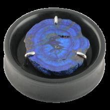 Ebony Plug with Rare Azurite Druzy Setting (Price for Pair)